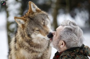 456109-wolves3-of-wolf-and-man