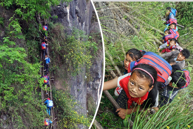 Schoolchildren-need-to-climb-vine-ladder-to-get-to-school-in-China-517994